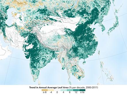 Mapa zalesienia Azji, źródło: nasa.gov