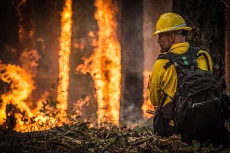 Strażak gaszący pożar lasu, źródło: pixabay.com