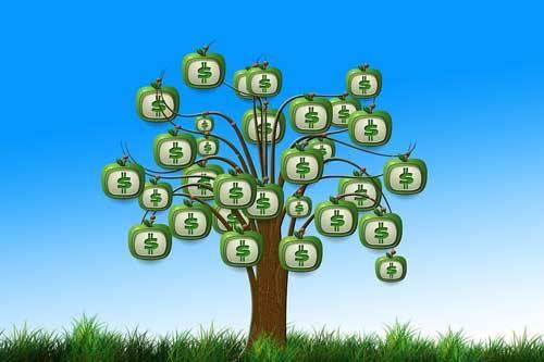 Pieniądze nie rosną na drzewie!