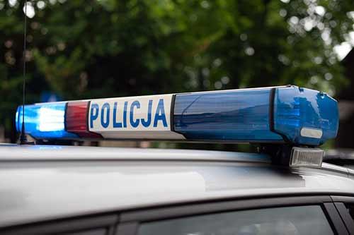 Kogut policyjnego radiowozu, foto: pixabay.com